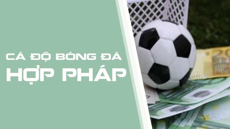 Cá cược bóng đá trực tuyến có thể đảm bảo an toàn cho người chơi bởi những nhà cái uy tín thường có trụ sở chính tại nước ngoài nên cơ quan chức năng tại Việt Nam không thể can thiệp